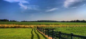 Compravendita di un terreno agricolo e diritto di prelazione